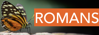 sermon series: ROMANS